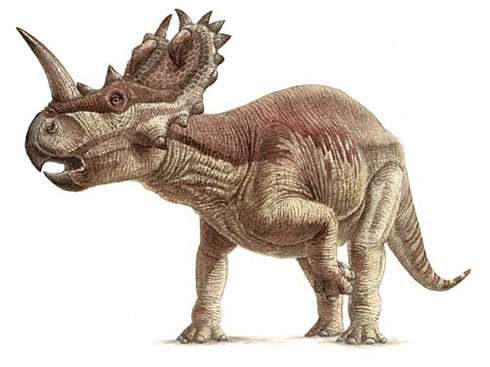Muscle reconstruction reveals how dinosaurs stood