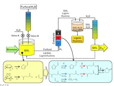 New biofuel conversion process cuts costly separating step