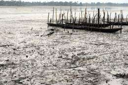 Oil pollution has ravaged swathes of the Niger Delta in the world's eighth largest oil producer