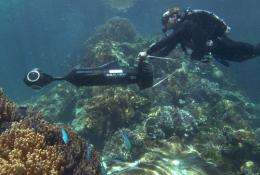 Panoramic images of Great Barrier Reef will take millions on virtualdives