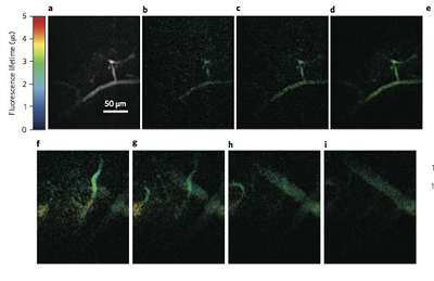 Phosphorescence mapping provides high-speed images