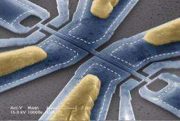 Physicists create first-ever mechanical device that measures the mass of a single molecule