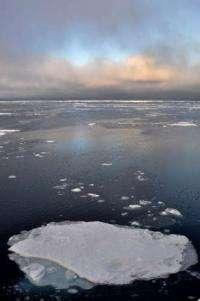 Predicting arctic sea ice loss