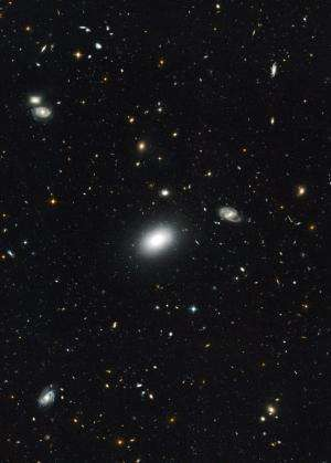 Radio galaxies in the distant universe