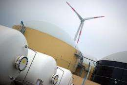 Renewable energy lobbyists and the government say the  abandonment of nuclear energy will help employment