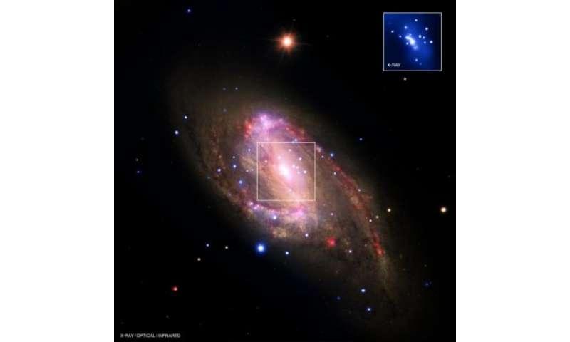 Revealing Hidden Black Holes