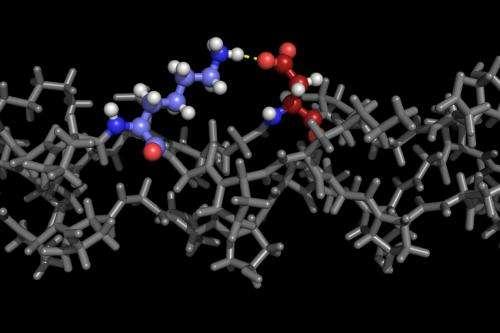 Rice University lab encodes collagen