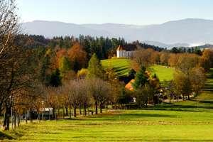 Rural cancer survivors at risk for poor outcomes