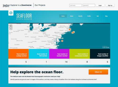 'Seafloor Explorer' website will provide everyone opportunity to identify seafloor life and habitats