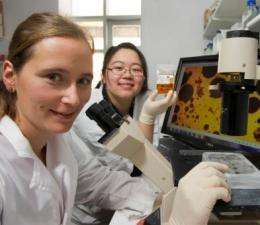 Sea sponges could act as early warning system