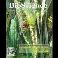 Secret sex life to help save world's endangered seagrasses
