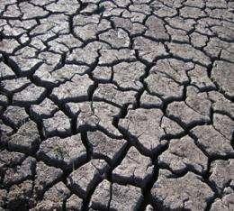Secret soil cracks linger underground
