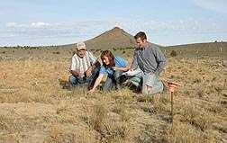 Seeding strategies help Rangelands recover from fire