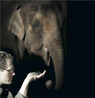 Small winners in the mammalian race to evolve
