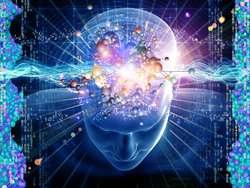 The balancing act to regulate the brain machinery