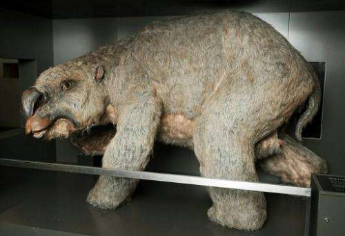 The graveyard could hold important clues on how the diprotodon lived and what caused it to perish