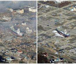 The Japanese disaster one year later