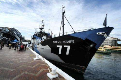 The Steve Irwin, the environmental activist group Sea Shepherd's main ship