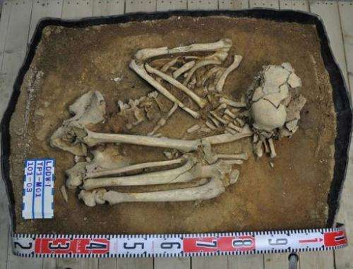 The Stone Age male, unearthed on Liang island off China, was about 35 when he died nearly eight thousand years ago