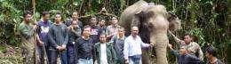 Tracking endangered elephants with satellite technology