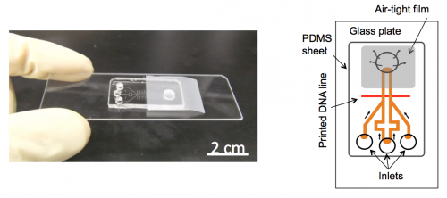 New portable device enables RNA detection from ultra-small sample in only 20 minutes