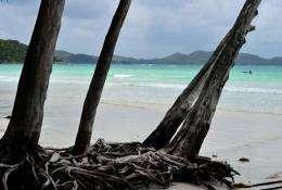 View of a beach on Praslin island, Seychelles