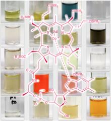 Vitamin variants could combat cancer as scientists unravel B12 secrets