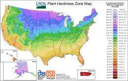 Warmer temperatures make new USDA plant zone map obsolete