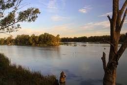 World's rivers running on empty: Study