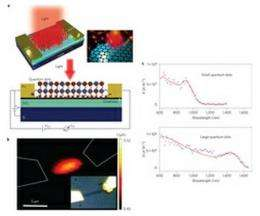 Research group creates highly sensitive photodetector from graphene and quantum dots