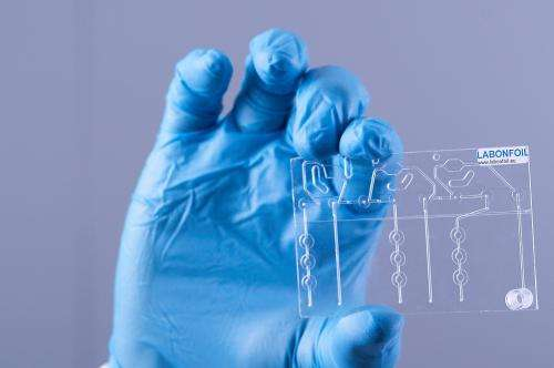 Rapid diagnostics, a new opportunity for European companies