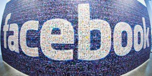 A big logo created from pictures of Facebook users worldwide in the company's Data Center in Luleaa, Sweeden on November 7, 2013