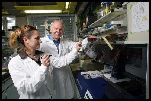 Biochemists discover 'parking position' of fat-burning enzymes
