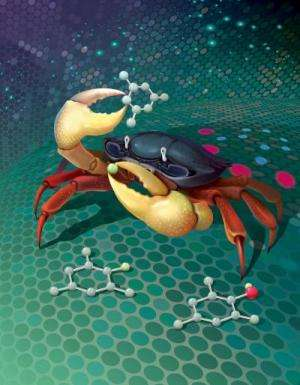 Chemical reaction could streamline manufacture of pharmaceuticals and other compounds