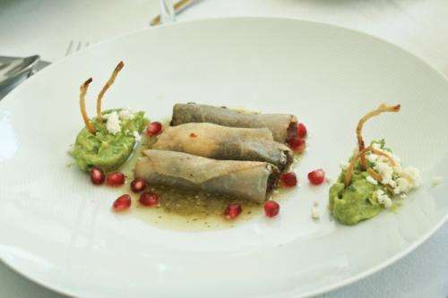 Five edible insects you really should try