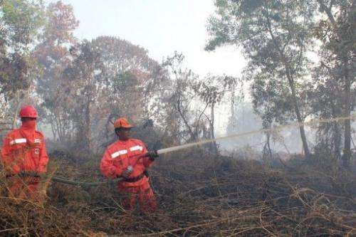 Indonesian firefighters from the Forest Ministry battle forest fires in Pekanbaru, on Sumatra island, on June 20, 2013