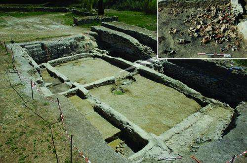 New biomolecular archaeological evidence points to the beginnings of viniculture In France