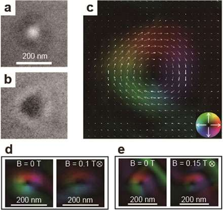 Observation of skyrmions in a ferromagnet with centrosymmetry