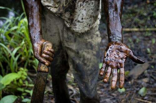 Oil exploration threatens Africa's billion dollar World Heritage Site