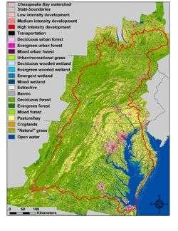 Persistence of 'urban' organics downstream favors dead-zone formation