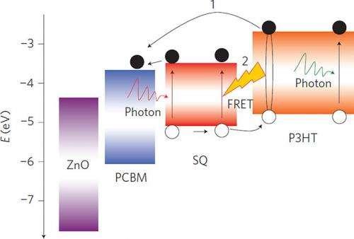 Polymer Solar Cells Employing Förster Resonance Energy Transfer