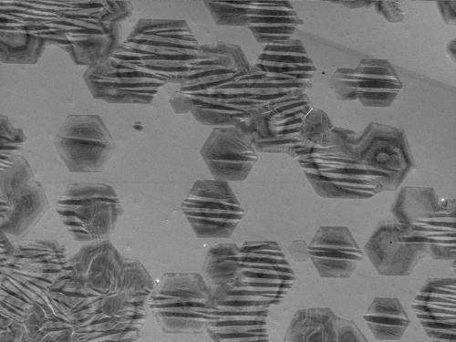 Routes towards defect-free graphene