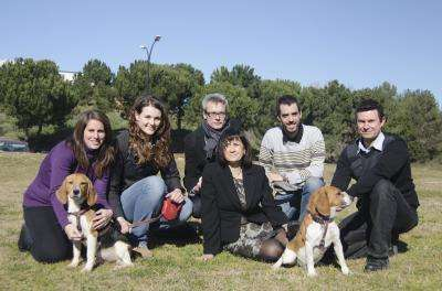 Spanish researchers cure type 1 diabetes in dogs