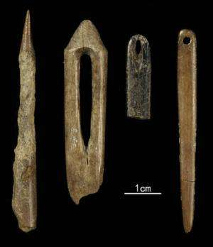 Study shows microblades connected with mobile adaptations in North-Central China