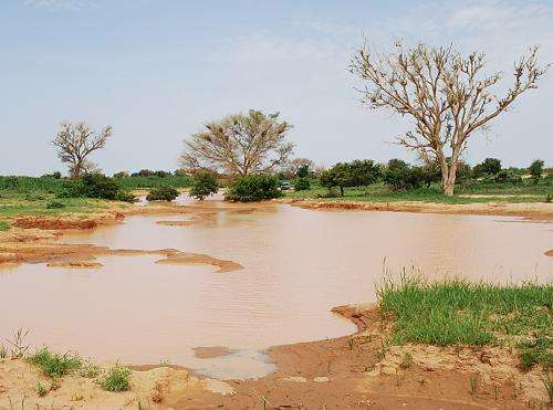 Study shows projected climate change in West Africa not likely to worsen malaria situation