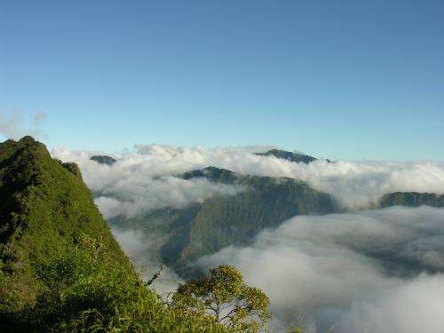 Tahiti: A very hot biodiversity hot spot in the Pacific