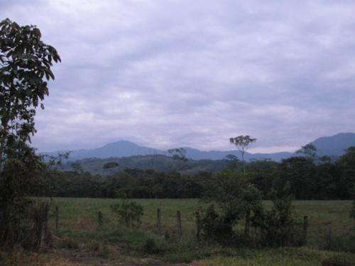 The natural ecosystems in the Colombian Orinoco Basin are in danger