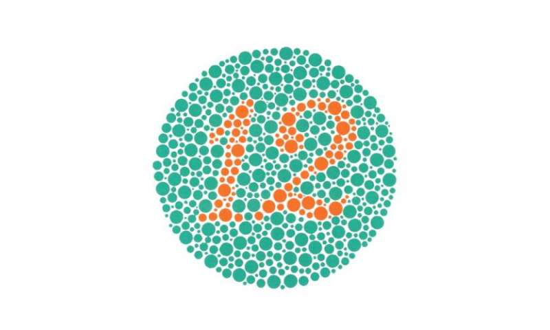 UA Researchers design software to detect changes in colour vision