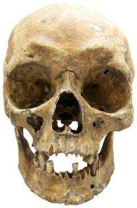 What did our ancestors look like?
