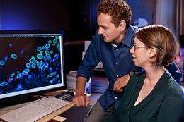 Researchers identify potential biomarker for cancer diagnosis